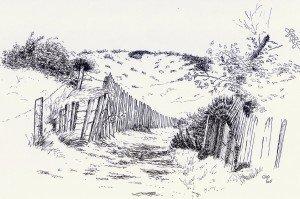 stylo plume : chemin dans paysage 2-300x199