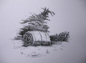 stylo plume : meule de foin dans paysage DSCN5004-300x221