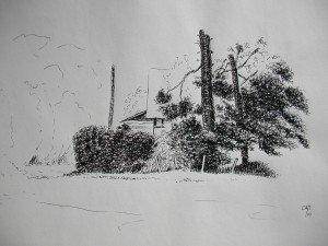 stylo plume dans paysage DSCN5228-300x225