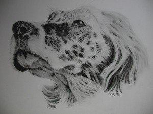 CRAYON GRAPHITE : SETTER dans crayon graphite setter-300x225