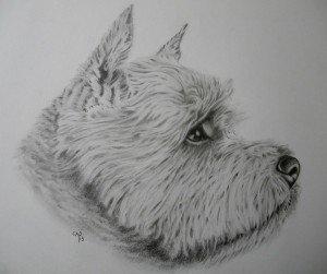 CRAYON GRAPHITE : CAIRN dans animalier crayon-graphite-cairn-300x251